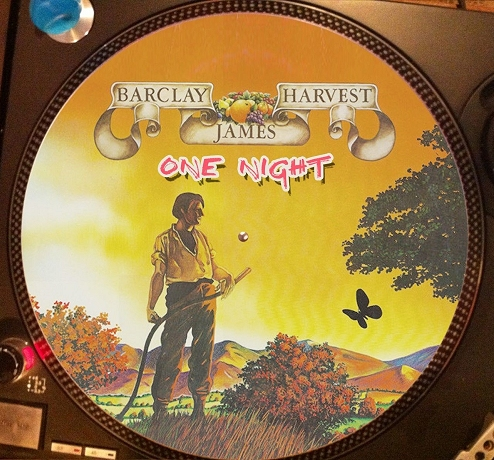 12 inch bootleg picture disc of 'One Night'